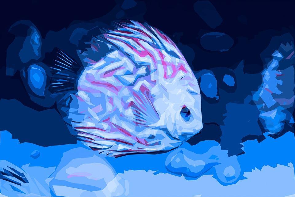 aquariumversicherung